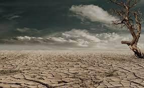 بسته پیشنهادی کمیسیون کشاورزی اتاق گرگان درخصوص جبران تبعات ناشی از کم بارشی و خشکسالی شدید دراستان گلستان