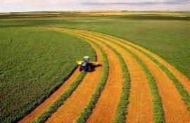 مقالات کشاورزی